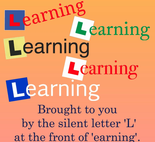 what is a learning style - L plates